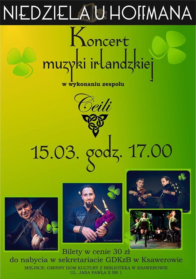 Koncert muzyki irlandzkiej
