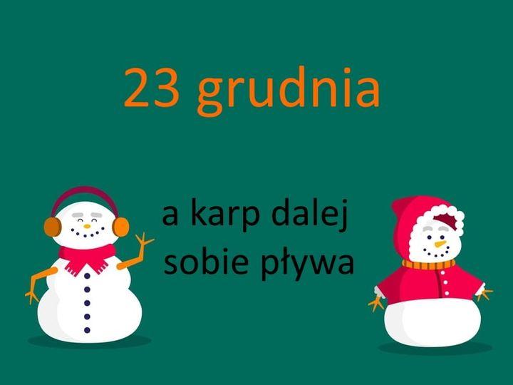 kartka z kalendarza, 23 grudnia, a karp sobie pływa