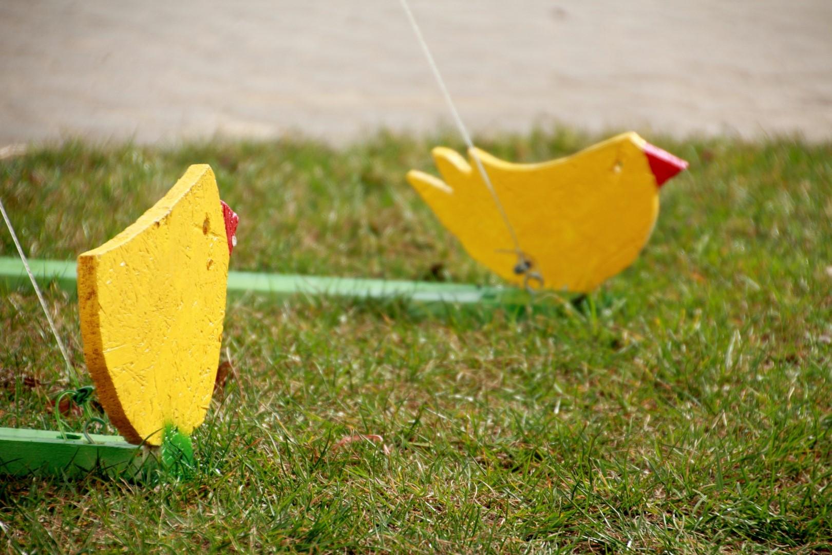 żółte, drewniane kurczaczki na trawniku
