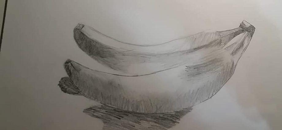 szkic bananów