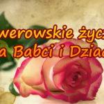 róża z napisem ksawerowskie życzenia dla babci i dziadka