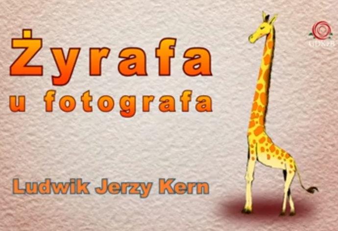 """rysnkowa żyrafa. Napis na plakacie """"Żyrafa u fotografa"""" Ludwik Jerzy Kern"""